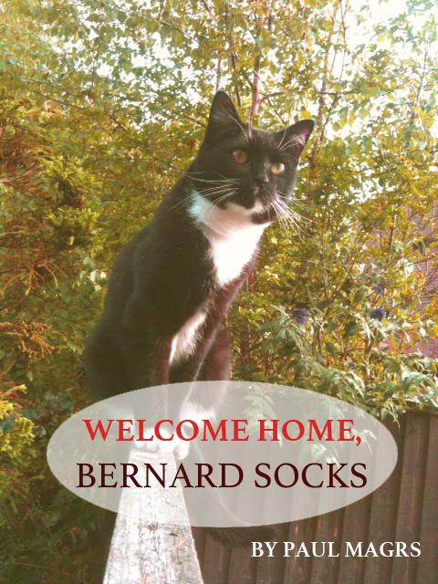 Welcome Home, Bernard Socks!